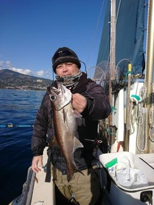 2日午前船・乗・LT中深場五目・新年初釣りの釣果<br><br> クロムツ 30~35cm 1~3本、キンメ 27~35cm 1~5枚。他、シロムツ 3尾にカゴカマスとドンコにユメカサゴ3尾混じった。序盤活性高く入れれば直ぐ当たる状況だったが、多点掛けが無かったため数伸ばせなかった。胴付き仕掛けと天秤仕掛けとの勝負になったが、潮の動き鈍い為か?手前マツリ多く、胴付きに軍配が上がった。<br><br> <p> </p><br> 本日の得点<br><br>             緑龍杯<br><br> 日吉     310pt<br><br> 鈴木     544pt